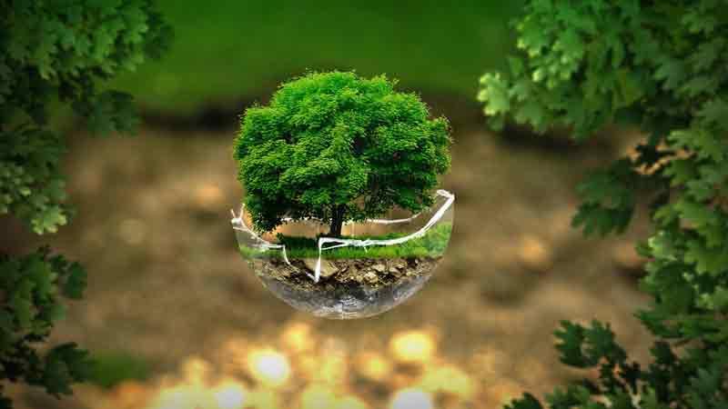 ciri-ciri lingkungan sehat
