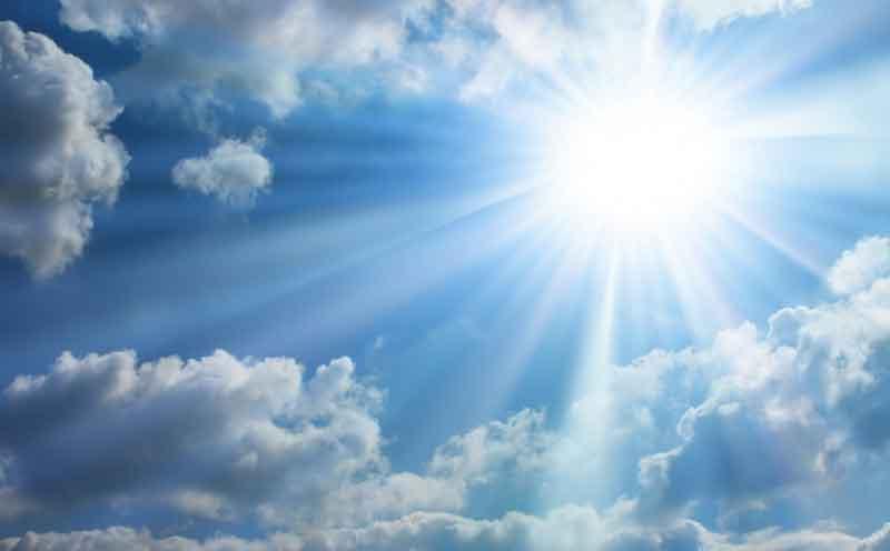 9 Manfaat Energi Matahari bagi Manusia, Hewan dan Tumbuhan