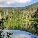 Cara Melestarikan Sumber Daya Alam Air, Tanah dan Tumbuhan